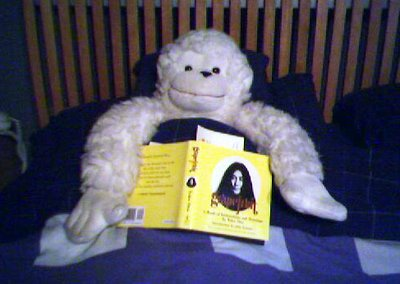 A White Monkey Reading a Yoko Ono Grapefruit in Bed, by Allan Revich