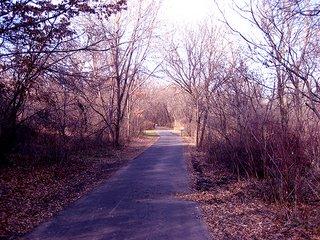 Road Ahead - Inside a park in Minneapolis