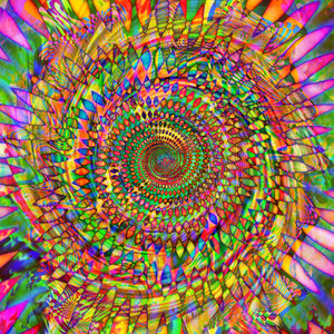 Psychedelics, Medicine Plants, and Chasing Peak Experiences Psychedelics