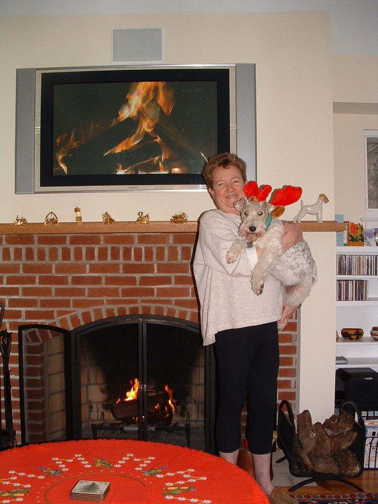 Modern Fireplace Christmas Decorations