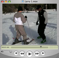 Larry's Ski Tips