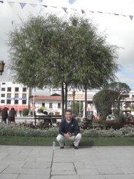 En algún lugar del Perú