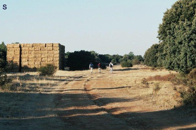 vrijdag 04: bij 'n hooiberg is de schapenrouten