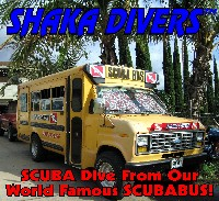 The World Famous SCUBABUS!