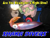 Temporarily Leave Planet Earth....Try Our Night Dives!