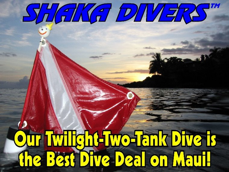 Our Twilight Two-Tank Dive Can't Be Beat! Only $109 per person, all inclusive! Book It Now!