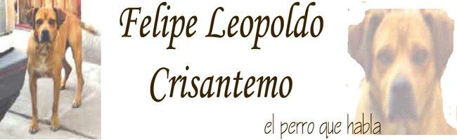 Felipe Leopoldo Crisantemo, el perro que habla