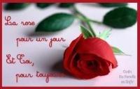 pour vous