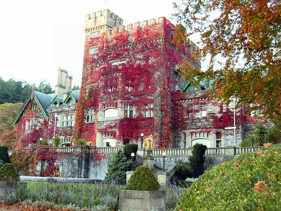 Autumn Castle