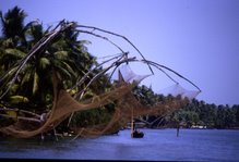 Chinese Fishing - Kerala India