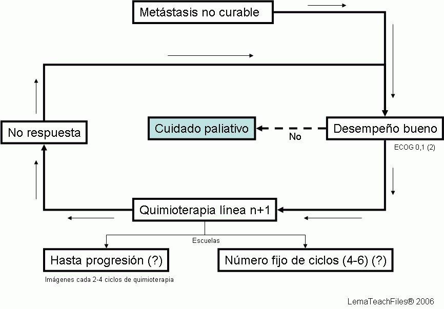 Hematología y Oncología: November 2006
