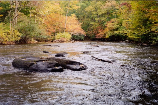 Musconetcong River