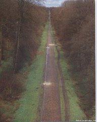"""Forêt d""""Arenberg (Paris-Roubaix)"""