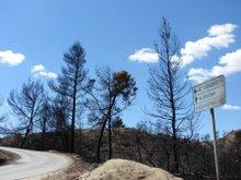 Cesta do Nea Skioni