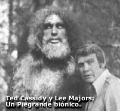 Bionic Bigfoot and Steve Austin