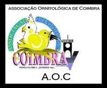 Logo da AOC