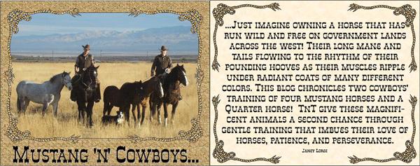 Mustang 'n' Cowboys