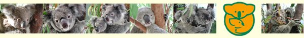 Australian Koala Foundation