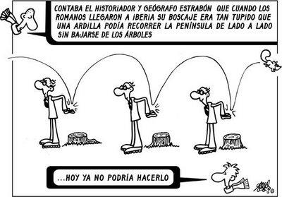 El País 10/11/06