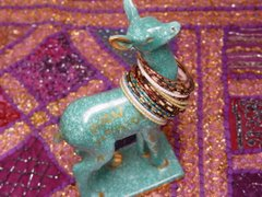 Le Bichon au Rajasthan