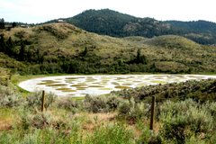 Spotted Lake, Osoyoos  06/07
