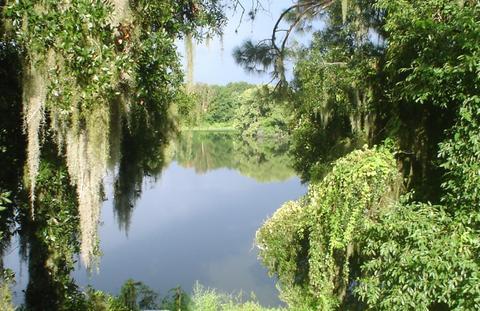 Lake Sarasota