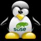 * Solo Linux *