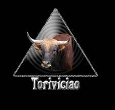 Logo toriviciao