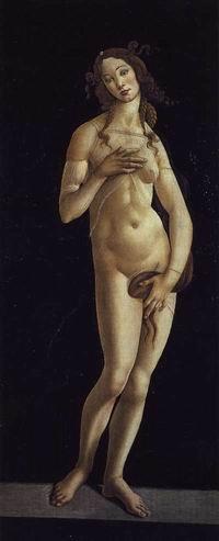 """""""Venere"""""""