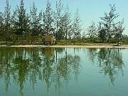 Lagoa de Araruama...