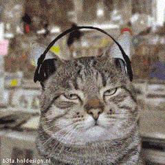 Słuchacz kontemplujący