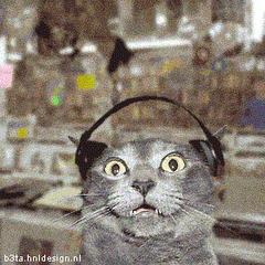 Słuchacz przerażony  końcem  niezależności  Radia 2000FM!!!