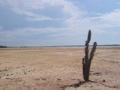 La Guajira Exótica