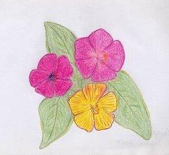 fiori viola e gialli