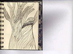lettonia. albero