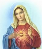 Immaculate Heart of Mary Pray for Us