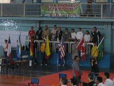 PANAMERICANO / 2006