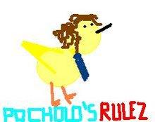 Las reglas de POCHOLO