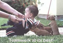 Team Work Helps