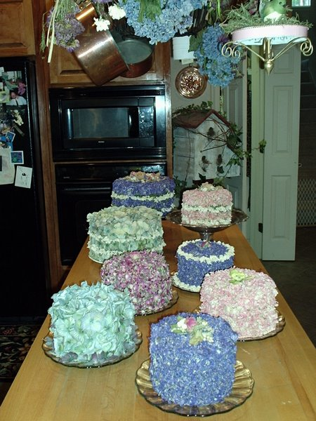 Here's a collection of dried flower cakes - just another excuse to use flowers