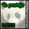 Display del Club: Panda