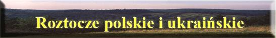 Roman Kręplewicz Nowy Rozdzial