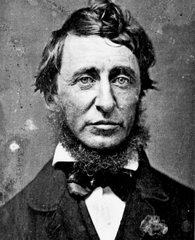 El rostro del escritor Henry David Thoreau