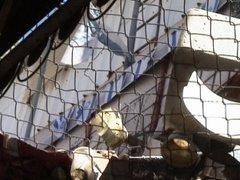 Les colons jettent des détritus et des pavés sur les passants palestiniens.