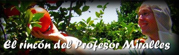 El rincón del Profesor Miralles