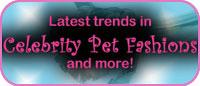 Funny Fur Blog