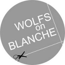wolfsonblanche@yahoo.com.ar