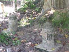 >>Makam Tuanku Nai Long Mahmud ibni Nai Long Haji Yassin