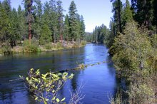 The Metolius River