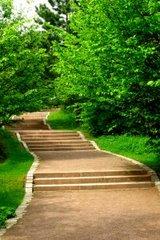 Mit der richtigen Heilfasten-Anleitung und der richtigen Unterstützung ist der Weg klar und einfach
